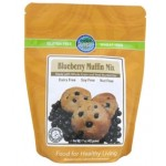 Authentic Foods Gluten Free Blueberry Muffin Mix, 1 lb